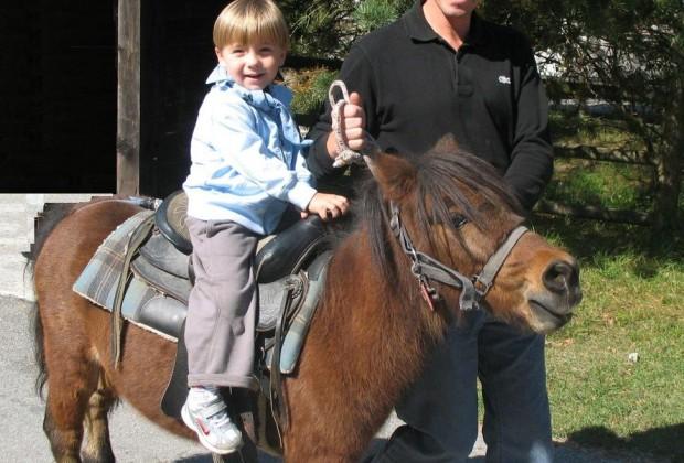 pony monterosso