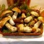 I Funghi del Monterosso
